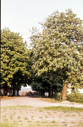 Dietersdorf_5_10.08.1980